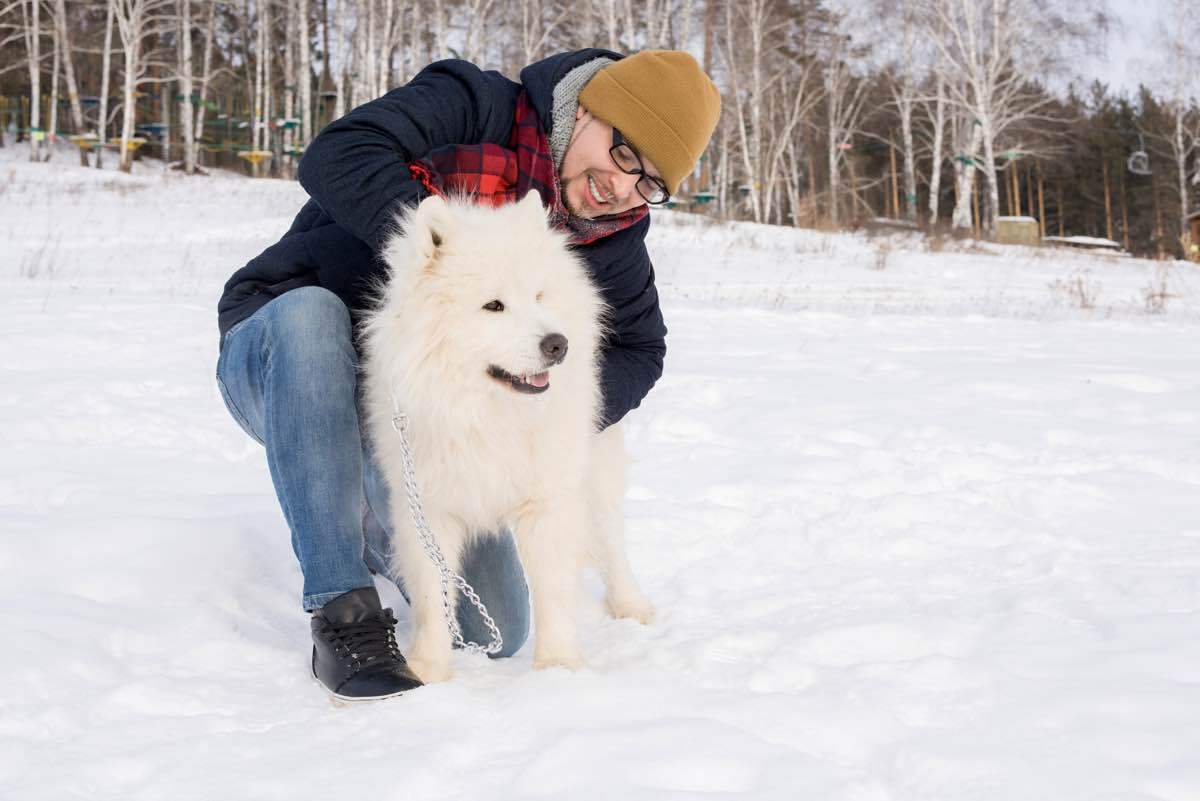 Man playing with white Dog
