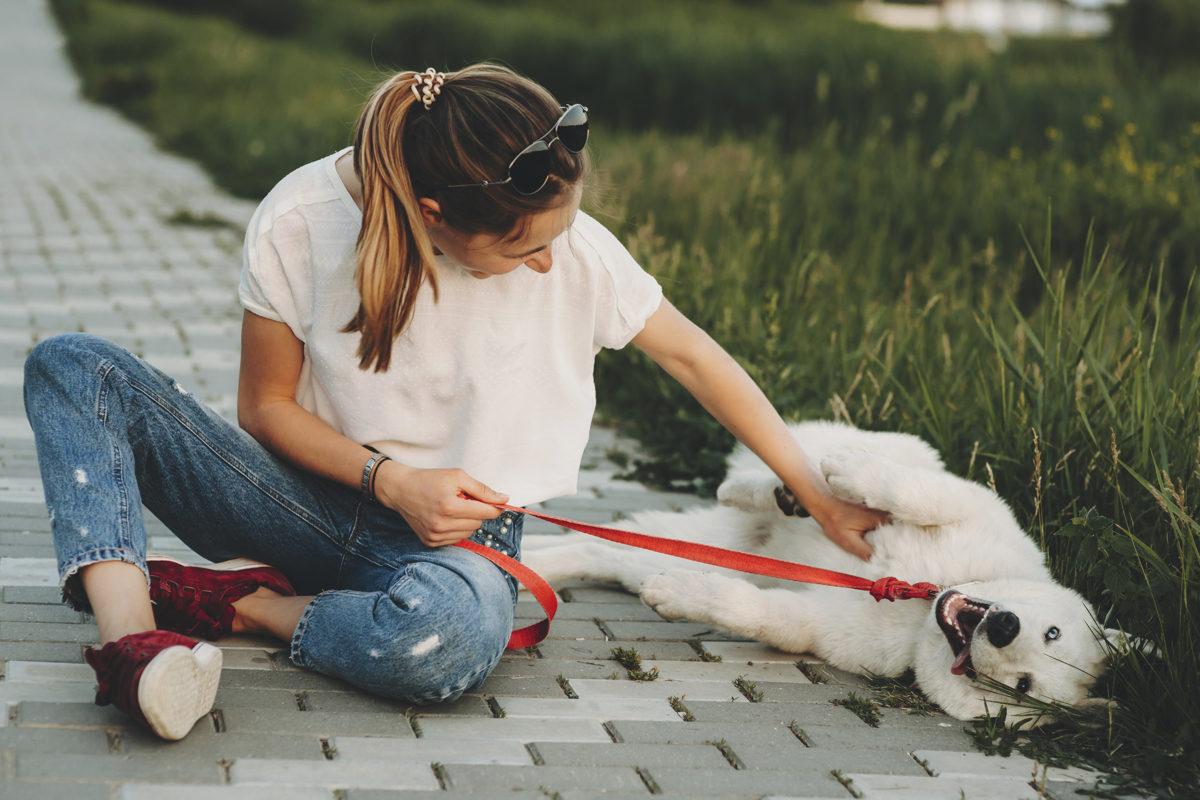 Mujer rascando la barriga a un perro en la calle